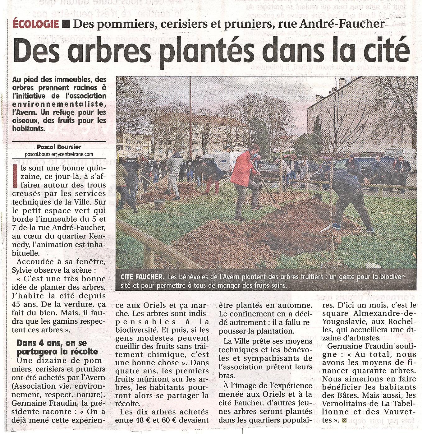 Plantations des arbres fruitiers 1ère tranche