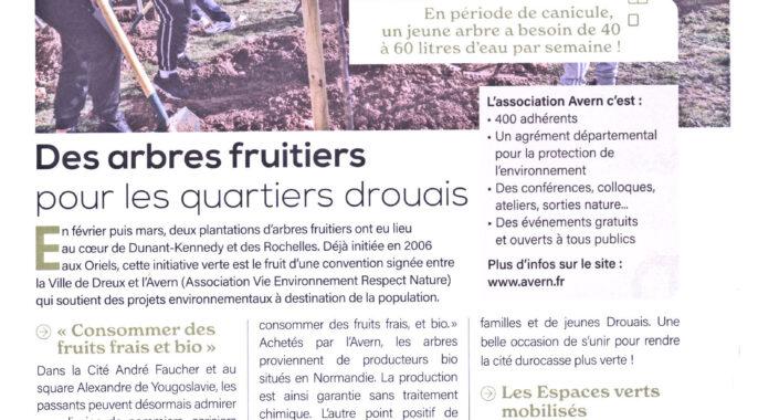 Plantations des arbres fruitiers